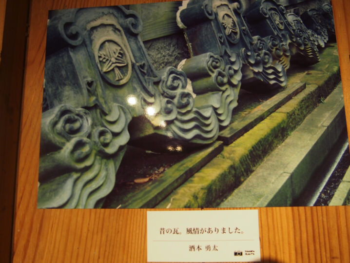 mabuya-daisen-photo11