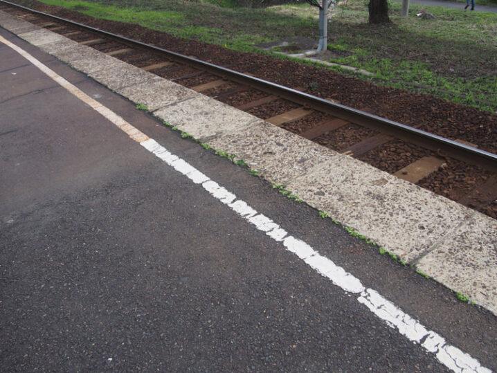 ooiwa-station-sakura4