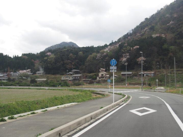 ooiwa-station-sakura8
