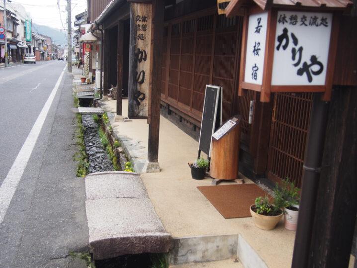 wakasa-sakura-festival3