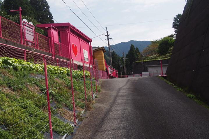 koiyamagataeki28
